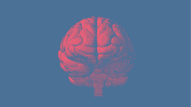 Powerful New Algorithm Is a Big Step Towards Whole-Brain Simulation