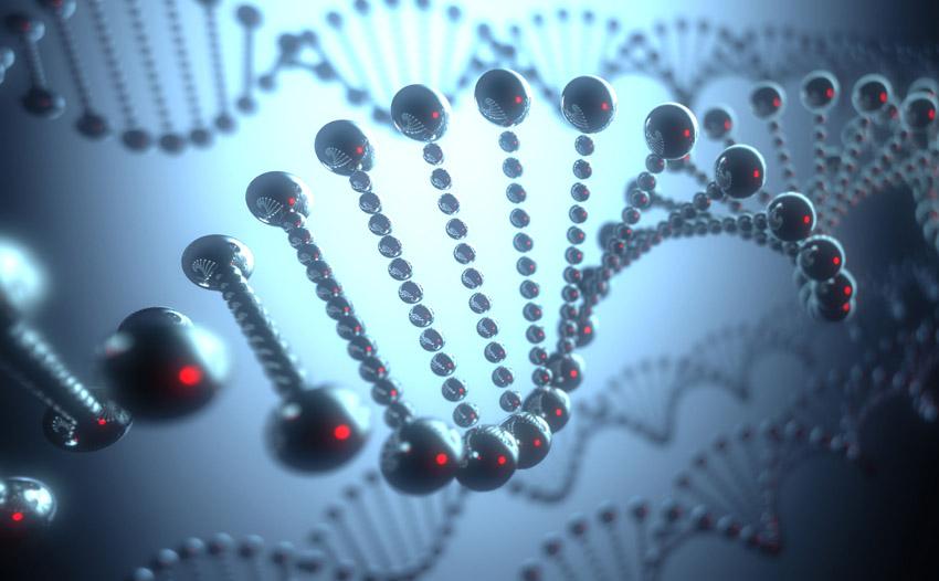 Micro-Robotics Using DNA