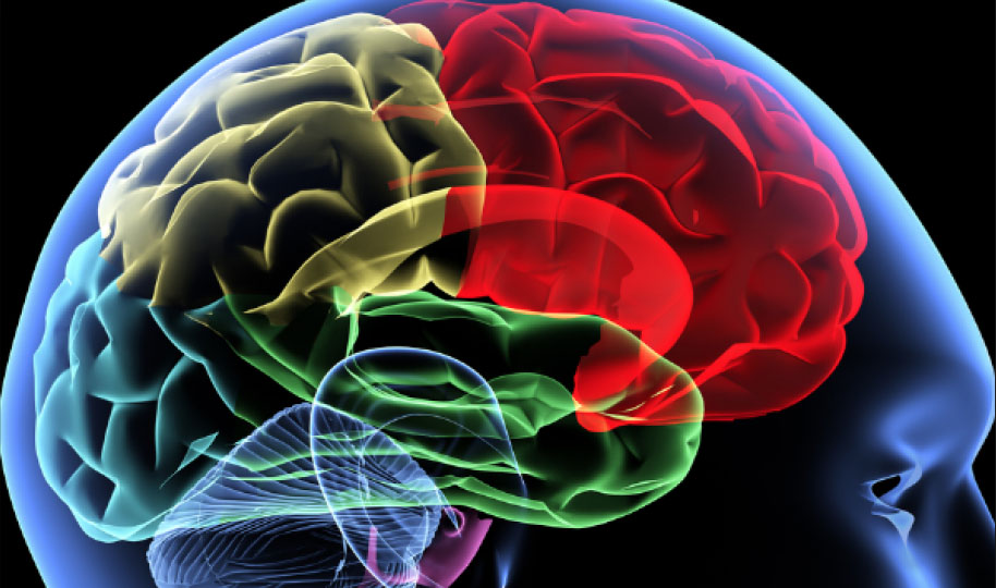 The Coming Boom In Brain Medicines