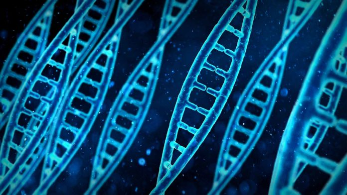 New Study Sounds a Note of Caution in the Development of CRISPR Gene Therapies