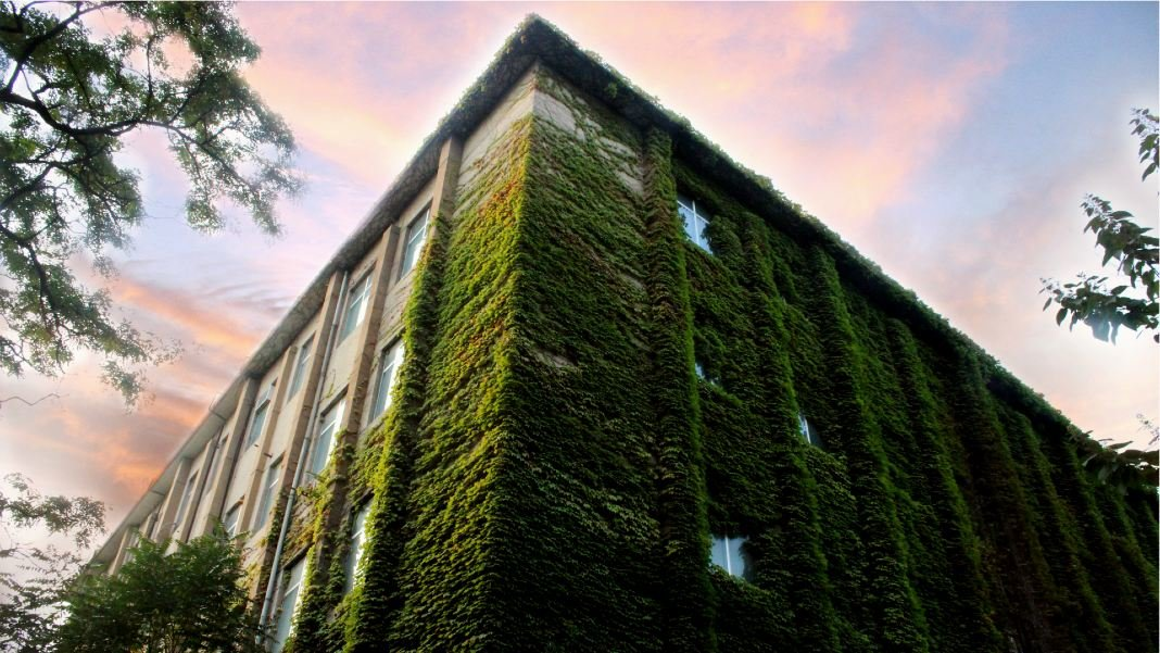 The Home of the Future Is Not Smart - It is Living and Green